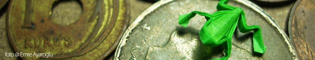 Economía de Recursos Naturales